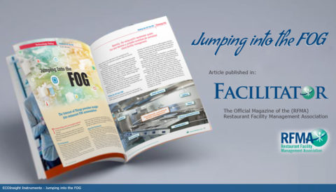 Facilitator Article